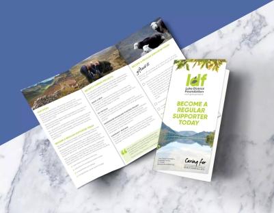 LDF flyer copy